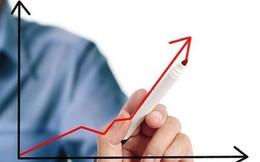 SIP tăng 6 lần sau 3 tháng lên sàn, Phó TGĐ chốt lãi thành công 14 triệu cổ phiếu