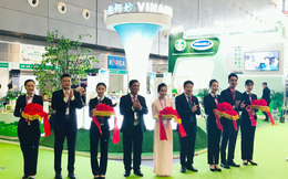 """Khai mở thị trường Trung Quốc, cổ phiếu Vinamilk bất ngờ """"sáng"""" nhất thị trường chứng khoán"""