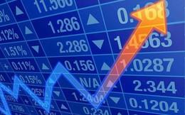 Trước khi chuyển sàn sang HoSE, Thuận Đức (TDP) phát hành riêng lẻ 20 triệu cổ phiếu tăng vốn điều lệ