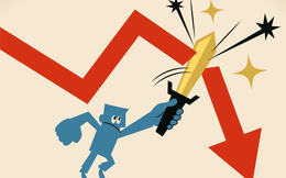 BĐS DPV bán sạch 31 triệu cổ phiếu FIT, cắt lỗ sâu sau hơn 2 năm làm cổ đông lớn