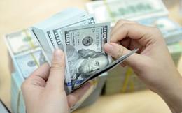 """Điều gì khiến giá đô la Mỹ """"đóng băng"""" tại hàng loạt ngân hàng?"""