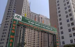 Thị giá giảm 27% trong hơn 2 tháng, Xuân Mai Corp (XMC) triển khai phát hành 9,6 triệu cổ phiếu chào bán cho cổ đông hiện hữu