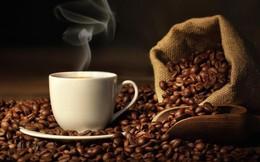 Xuất khẩu cà phê ảm đạm trong nửa đầu tháng 9/2019