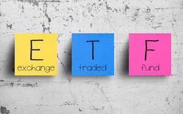 Premia MSCI Vietnam ETF hút tiền trở lại trong tuần giao dịch cuối tháng 9