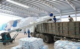 Chính thức áp dụng biện pháp thuế tự vệ đối với phân bón DAP và MAP nhập khẩu vào Việt Nam