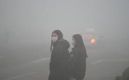 Nỗi đau dông dài của Trung Quốc: Nỗ lực phát triển nhà máy chạy năng lượng xanh, không ngờ phải trả giá bằng sự trượt dốc của nền kinh tế