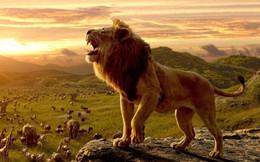 """Ai cũng muốn sống một đời oai hùng, vẻ vang nhưng lại thường """"lờ đi"""" 6 bài học giá trị này: Nguyên tắc cốt lõi là không từ bỏ dù rơi xuống tận cùng tuyệt vọng!"""