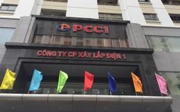 Các mảng kinh doanh cốt lõi đồng thuận tăng trưởng, cơ hội cho PC1 hồi phục?