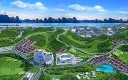 Quảng Ninh cảnh báo tình trạng phát triển nóng của thị trường bất động sản