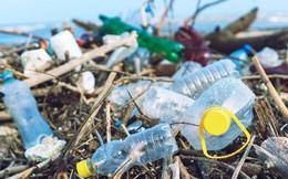 Hạn chế và ngừng dùng bao bì nhựa: Cần có lộ trình và phối hợp thực hiện đồng bộ
