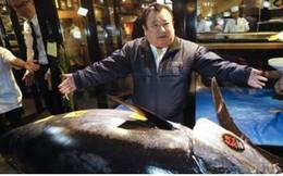 Cá ngừ vây xanh khổng lồ được đấu giá hơn 3 triệu USD tại Nhật Bản
