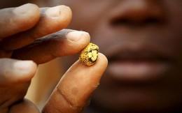 """Tổng thống Ghana sợ Trung Quốc """"đào trộm"""" vàng"""