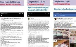 Ba vi phạm lớn của Facebook tại Việt Nam