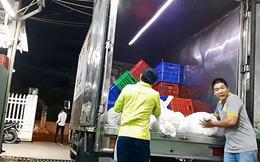 'Đầu nậu' cung cấp bún cho TPHCM bị phát hiện gian lận ngày sản xuất