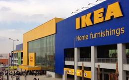 IKEA vào Việt Nam: Người tiêu dùng vỗ tay ăn mừng, các doanh nghiệp đối thủ thận trọng, thị trường nội thất trong nước liệu có chao đảo?