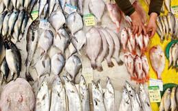 Việt Nam chi 1,72 tỷ USD nhập khẩu thủy sản trong năm 2018
