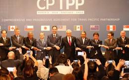 Ban hành Thông tư về quy tắc xuất xứ trong CPTPP