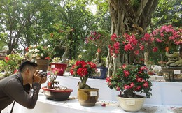 Đi chơi tết, dân Sài Gòn thích thú ngắm 'kỳ hoa dị thảo'