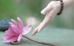 Phúc lộc, công danh đời người: Có 2 thứ, tuyệt đối phải nhớ