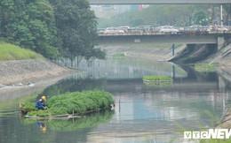Sau 4 năm thả bè thủy trúc, nước sông Tô Lịch giờ ra sao?