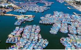 Ngắm âu thuyền, cảng cá Thọ Quang từ trên cao