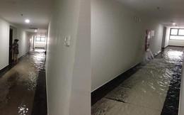 """Đường ống dẫn nước PCCC bung mối, dân chung cư ở Hà Nội náo loạn vì """"lũ lụt"""" trên cao"""