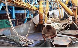 Ngư dân Quảng Ngãi khởi động mùa câu mực mới