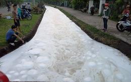 Nước kênh nổi bọt trắng xóa, cá chết dày đặc ở Quảng Nam