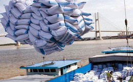 Triển khai mua dự trữ lúa gạo quốc gia