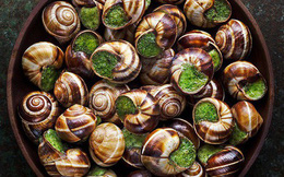 Gordon Ramsay nói Việt Nam ăn bất kì con gì di chuyển, ẩm thực Pháp cũng y hệt như vậy