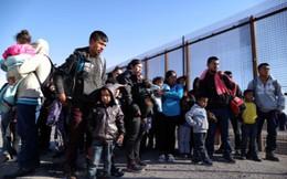 Hàng rào biên giới Mỹ, từ biện pháp bảo vệ thành 'điểm đến hấp dẫn' người tị nạn