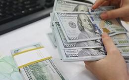 Ngân hàng Nhà nước tiếp tục mua ròng ngoại tệ