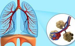 Ai quan tâm đến sức khoẻ tim, gan, phổi, thận cần phải biết điều này