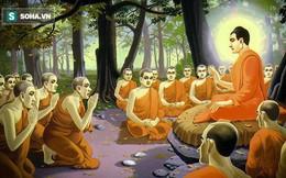 Câu chuyện cuộc đời Đức Phật và lời răn cuối cùng của Ngài trước khi đi vào cõi Niết bàn