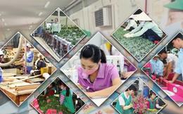 Đến năm 2030, thu nhập người làm nông nghiệp ở Việt Nam tăng 1,5 lần