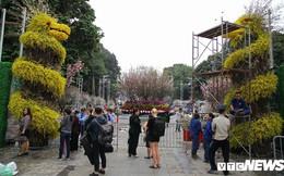 Ảnh: 40.000 cành hoa anh đào chuyển từ Nhật Bản tới Hà Nội
