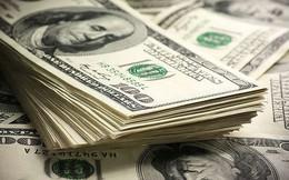 Giá USD diễn biến 'lạ'