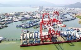 Sắp bị thu hồi, cảng Quy Nhơn bất ngờ đề xuất tăng vốn điều lệ