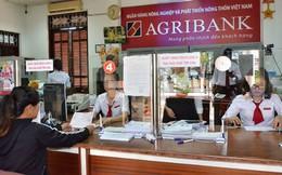 Khoản vay 708 tỷ đồng, Agribank phát giá khởi điểm chỉ phân nửa