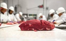 Thịt bò Tây Ban Nha chuẩn bị 'đổ bộ' Việt Nam