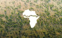 """Điều chưa từng có ở châu Phi: Bức """"tường"""" xanh khổng lồ dài hơn 8.000km trải dài qua 20 nước"""