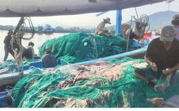 Giá xăng dầu liên tục tăng, nhiều tàu cá nằm bờ