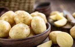 Những thực phẩm giàu tinh bột bạn nên đưa vào chế độ ăn hàng ngày