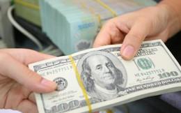 Chuyên gia nhận định: Không lo ngại khi tỷ giá tăng