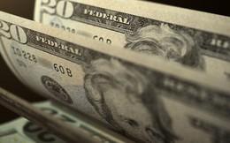 Nhà giàu thế giới nắm 1/3 tài sản dưới dạng tiền mặt