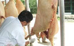 Đồng Nai kêu gọi doanh nghiệp cấp đông thịt heo