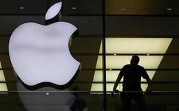 """13 tuổi đã hack cả Apple để """"xin việc"""", thanh niên thoát tội vì """"tài năng đáng dùng hơn bỏ tù"""""""