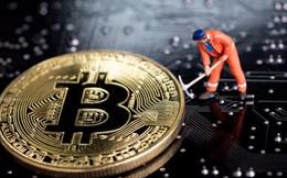 Bitcoin được cảnh báo sẽ còn giảm mạnh hơn nữa