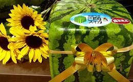 """Những loại trái cây giá """"trên trời"""", gấp cả trăm lần quả vải thiều Shintomi 240.000 đồng/quả, có loại cả trăm triệu đồng"""