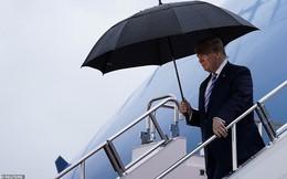 Tổng thống Trump, Chủ tịch Tập 'đội mưa' tới Nhật Bản dự G-20, sẵn sàng cho các cuộc gặp cân não